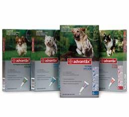 Advantix for Dogs 10-25kgs 6 pack