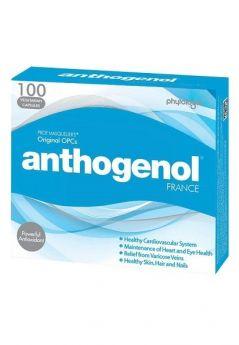 Anthogenol 100