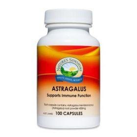 Nature's Sunshine Astragalus 450mg 100 Capsules - NSP0040
