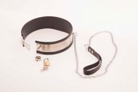 Rapture Steel Band Leashed Collar small - RAP  C-15S